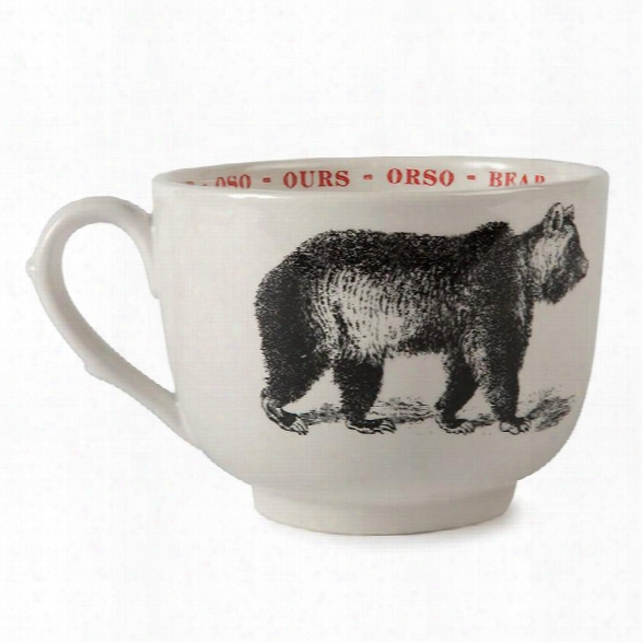 Bear Fauna Cups Design By Sir/madam
