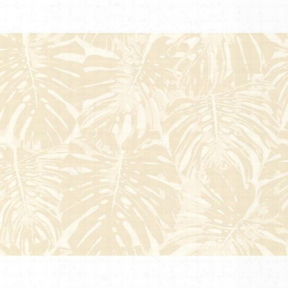 Sample Jamaica Wallpaper In Beige And Ivory From The Tortuga Collection By Seabrook Wallcoverings