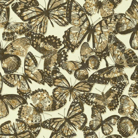 Sample Jeweled Monarch Wallpaper In Light Brown Design By York Wallcoverings