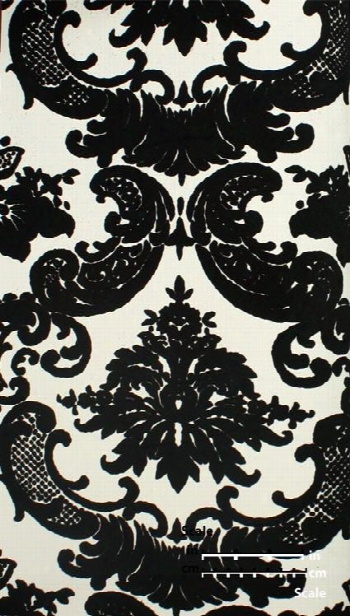 Classical Damask Velvet Flocked Wallpaper In Black And White From The Plush Collection By Burke Decor