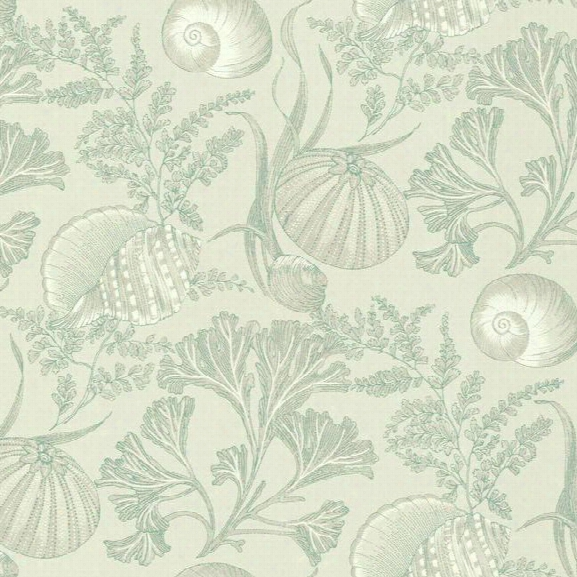 Coral Shells Wallpaper In Aqua And Beige Design By York Wallcoverings