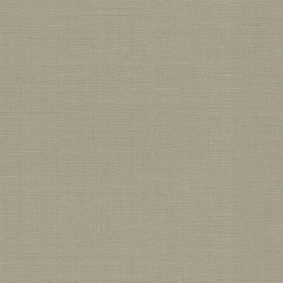 Cotton Olive Texture Wallpaper From The Beyond Basics Collection By Brewster Home Fashions
