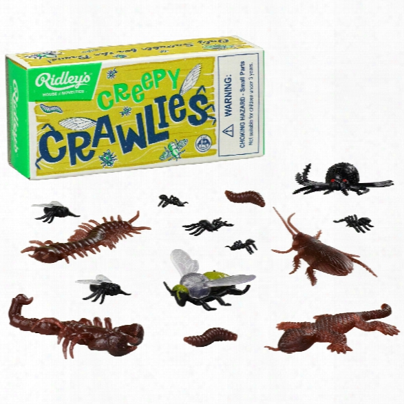Creepy Crawlies Design By Wild & Wolf