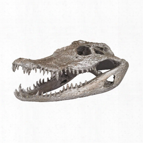 Crocodile Skull In Silver Leaf Design By Lazy Susan