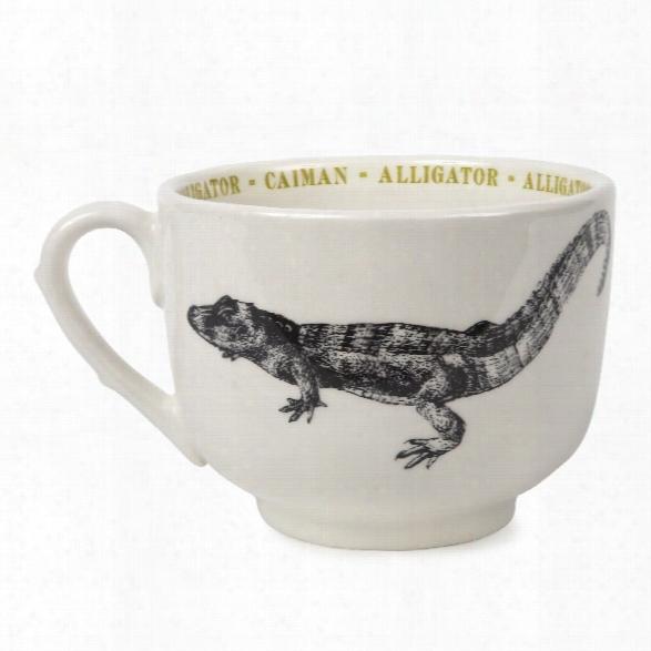 Alligator Fauna Grand Cup Design By Sir/madam
