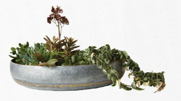 Decorative Galvanized Metal Bowl Design By Bd Edition