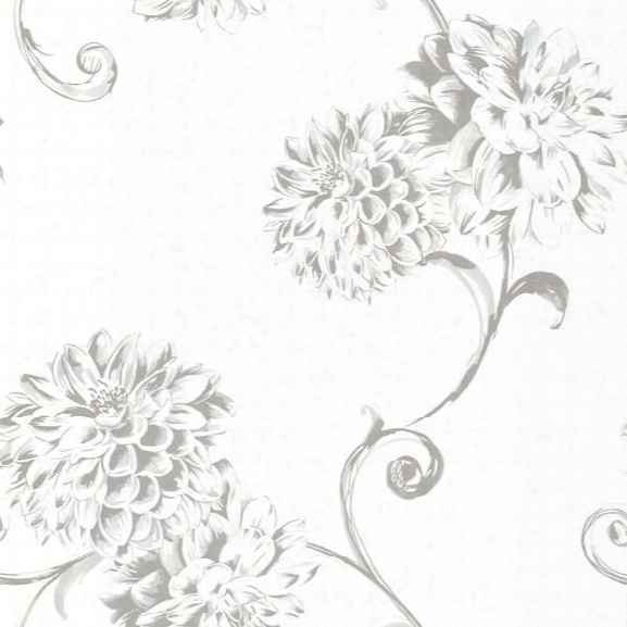 Deliah White Watercolor Dahlia Wallpaper Design By Brewster Home Fashions
