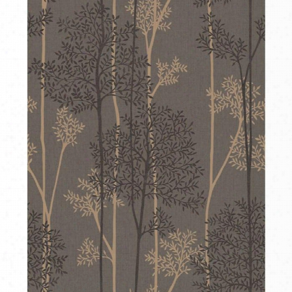 Eternal Wallp Aper In Chocolate And Bronze From The Innocence Collection By Graham & Brown