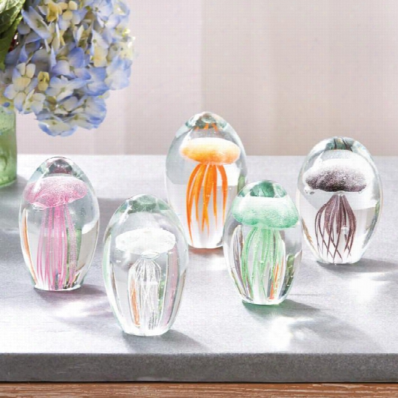 Fossilisee Jellyfish Art Glass Design By Tozai