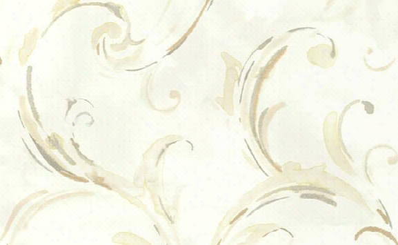 Belle Scrolled Wallpaper In Ivory And Browns By Carl Robinson For Seabrook Wallcoverings