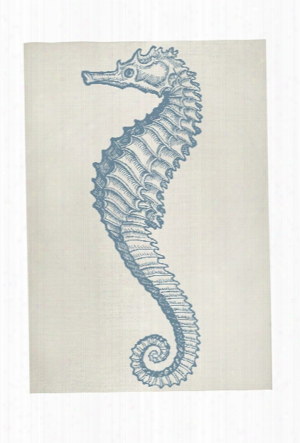 Seahorse Bath Mat In Aqua Design By Thomas Paul