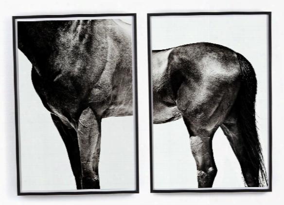 Set Of 2 Horse By Yusuke Murata Wall Art