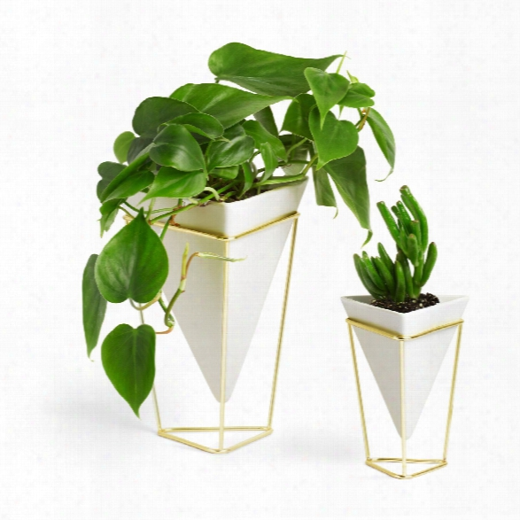 Set Of Two Trigg Vase In White Design By Umbra