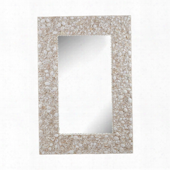 Shell Wall Mirror Design By Lazy Susan