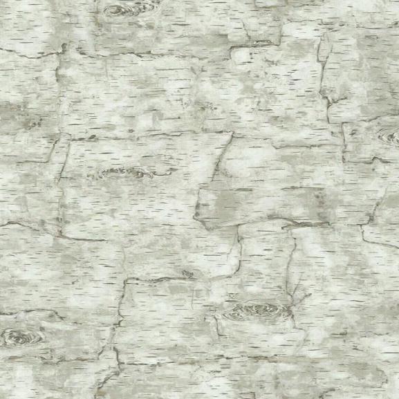 Birch Bark Wallpaper In White By York Wallcoverings