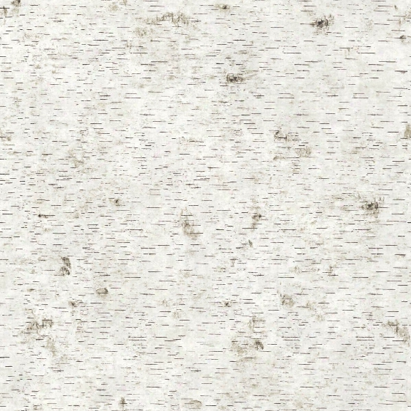 Birchy Barky Self Adhesive Wallpaper In No Filter Natural By Genevieve Gorder For Tempaper