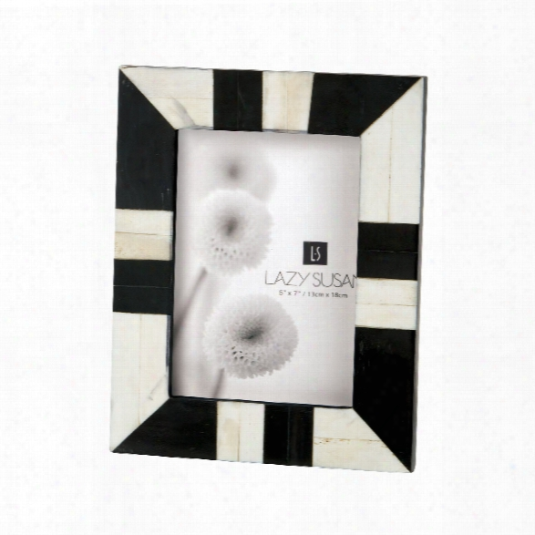 Black & White Horn And Bone 5 X 7 Picture Frame Design By Lazy Susan