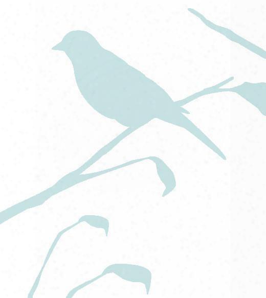 Blackbird Wallpaper In Glass Reversed Design By Cavern Home