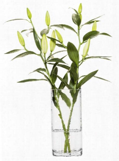 Tall Clear Siluett Vase Design By Sagaform