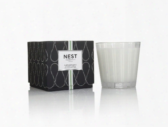 Tarragon & Ivy 3 Wick Candle Design By Nest Fragrances