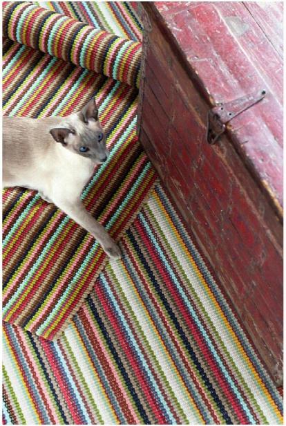 Toluca Stripe Indoor/outdoor Rug Design By Dash & Albert