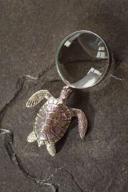 Turtle Magnifying Glass By Vagabond Vintage