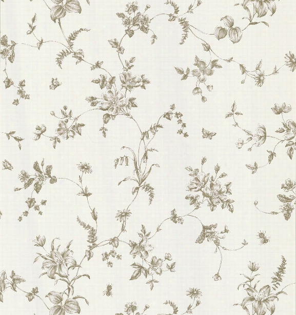Vivace Floral Trail Wallpaper In Taupe By Brewster Home Fashions