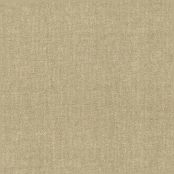 Wasp Beige Texture Wallpaper From The Beyond Basics Collection By Rbewster Home Fashions