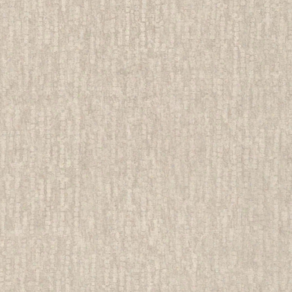 Wasp Champagne Texture Wallpaper From The Beyond Basics Collection By Brewster Home Fashions