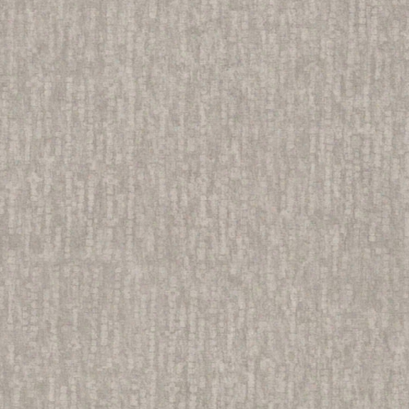 Wasp Silver Texture Wallpaper From The Beyond Basics Collection By Brewster Home Fashions