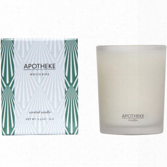 White Pine Votive Candle Design By Apotheke