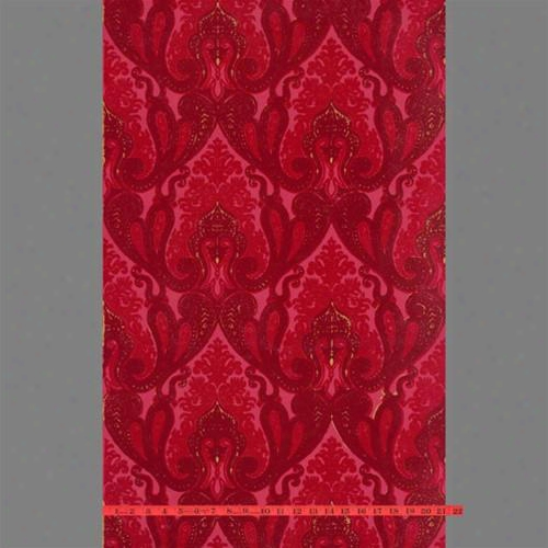 Burgundy And Red Kismet Ornate Indian Damask Velvet Flocked Wallpaper Design By Burke Decor