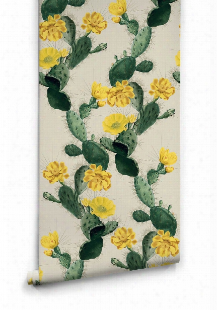 Cactus Wallpap Er In Yellow Day From The Kingdom Home Collection By Milton & King