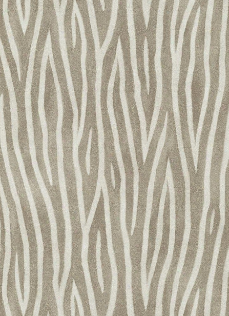 Zebra Stripes Wallpaper In Browns Design By Bd Wall