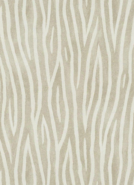Zebra Stripes Wallpaper In Taupe Design By Bd Wall