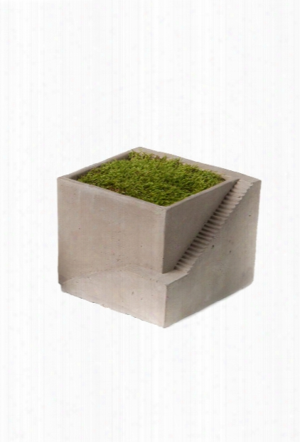 Cement Architectural Plant Cube Planter 1 By Vagabond Vintage