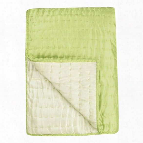 Chenevard Wild Lime & Pale Mint Reversible Quilt & Pillow Cases Design By Designers Guild