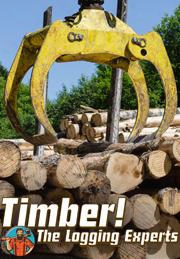 Timber! The Logging Experts
