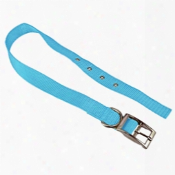 "#707 - 1"" Nylon Tongue Buckle Dog Collar"