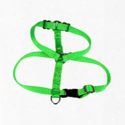 "#726 - 1/4"" Small H Type Dog Harness"