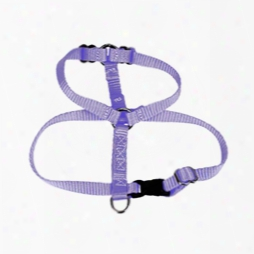 "#735 - 3/4"" Basic H Type Dog Harness"