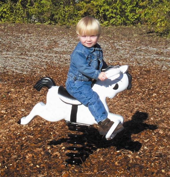 Aluminum Mustang Easy Rider