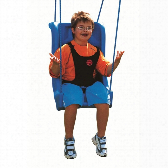 Child Full Support Seat Accessible Swing With Deluxe Harness