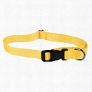 "#713 - 3/4"" Basic Adjustable Collar (small)"