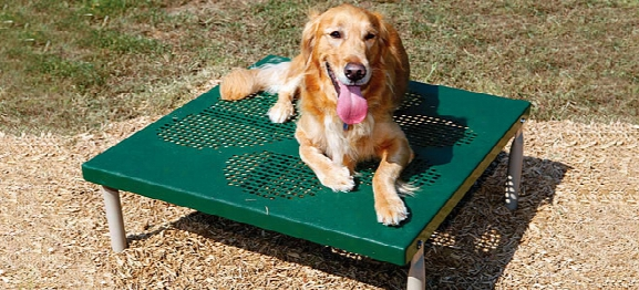 Bark Park Paws Table Grooming Table