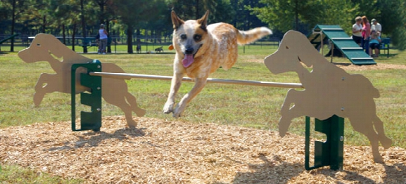 Bark Park Rover Jump Over Dog Exercise Equipment