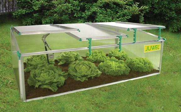 Biostar Premium Cold-frame Mini Greenhouse