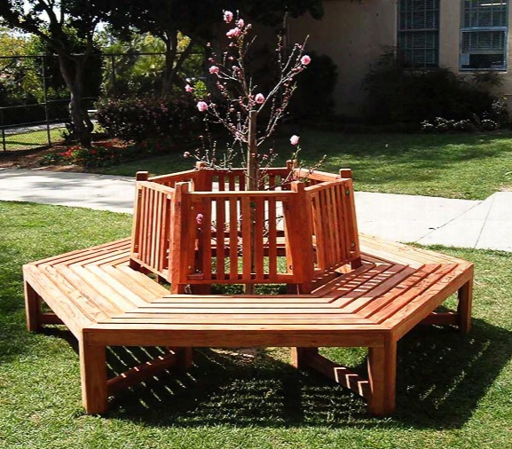 Forever Mature Growth Redwood Tree Bench 8 Foot