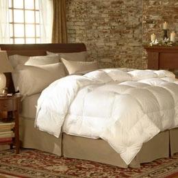 Medium Warmth Comforter - Twin