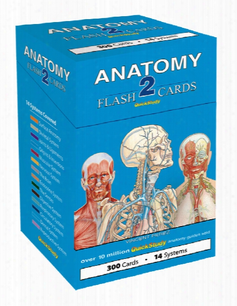 Barcharts Barcharts Anatomy 2 Flash Cards - Unisex - Medical Supplies